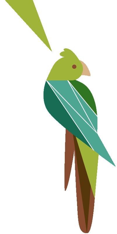 sidebar-cockatoo-01