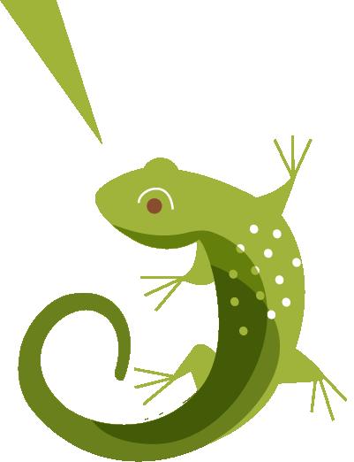 sidebar-lizard-01